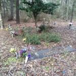 Cemetery Mansfield Plantation