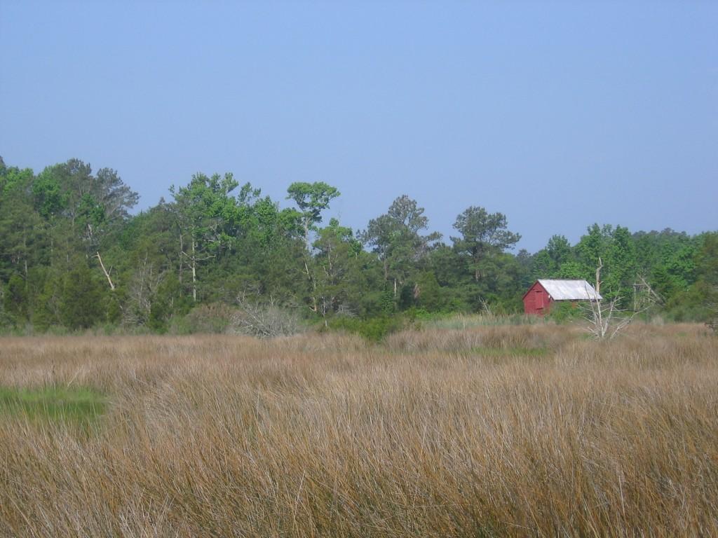 Virginia Tidewater Farm