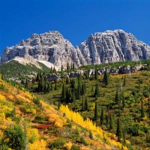Fall colors below garden wall in Glacier National Park, MT