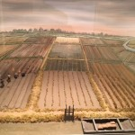 Diorama Rice Fields  Courtesy of the Rice Museum Georgetown SC