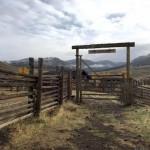 Lamar Buffalo Ranch Yellowstone National Park
