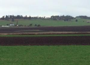 Agricultural land, Ebey's Landing National Historical Reserve